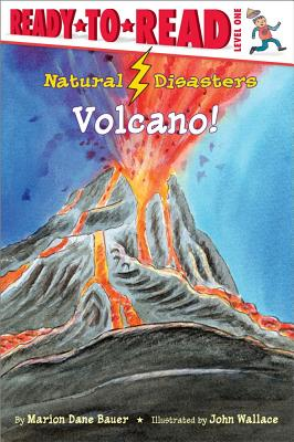 Natural Disasters By Bauer, Marion Dane/ Wallace, John (ILT)